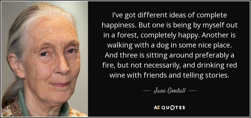 I've got different ideas of complete happiness. But one is being by myself out in a forest, completely happy. Another is walking with a dog in some nice place. And three is sitting around preferably a fire, but not necessarily, and drinking red wine with friends and telling stories. - Jane Goodall