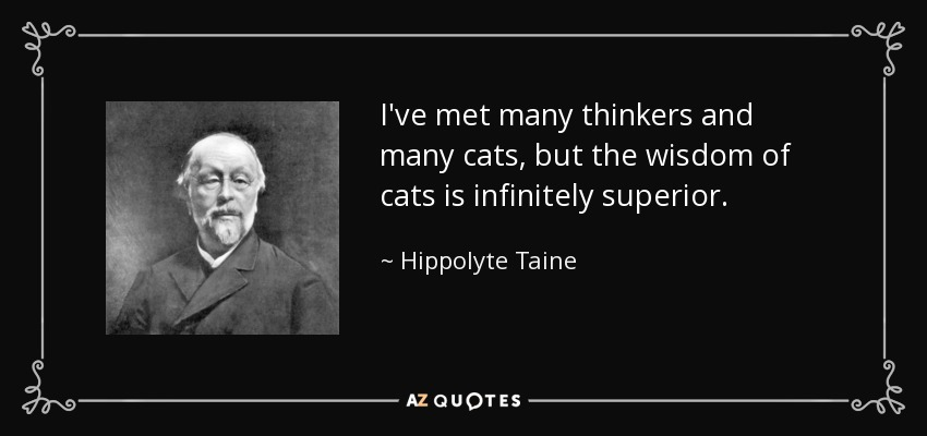 I've met many thinkers and many cats, but the wisdom of cats is infinitely superior. - Hippolyte Taine