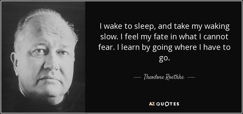 I wake to sleep, and take my waking slow. I feel my fate in what I cannot fear. I learn by going where I have to go. - Theodore Roethke