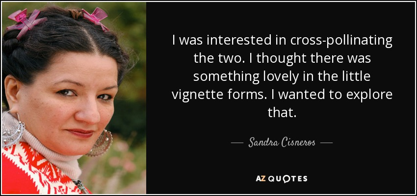 I was interested in cross-pollinating the two. I thought there was something lovely in the little vignette forms. I wanted to explore that. - Sandra Cisneros