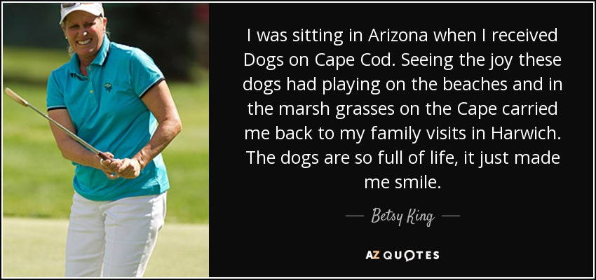 I was sitting in Arizona when I received Dogs on Cape Cod. Seeing the joy these dogs had playing on the beaches and in the marsh grasses on the Cape carried me back to my family visits in Harwich. The dogs are so full of life, it just made me smile. - Betsy King
