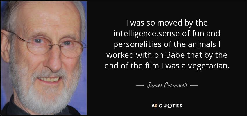 I was so moved by the intelligence,sense of fun and personalities of the animals I worked with on Babe that by the end of the film I was a vegetarian. - James Cromwell