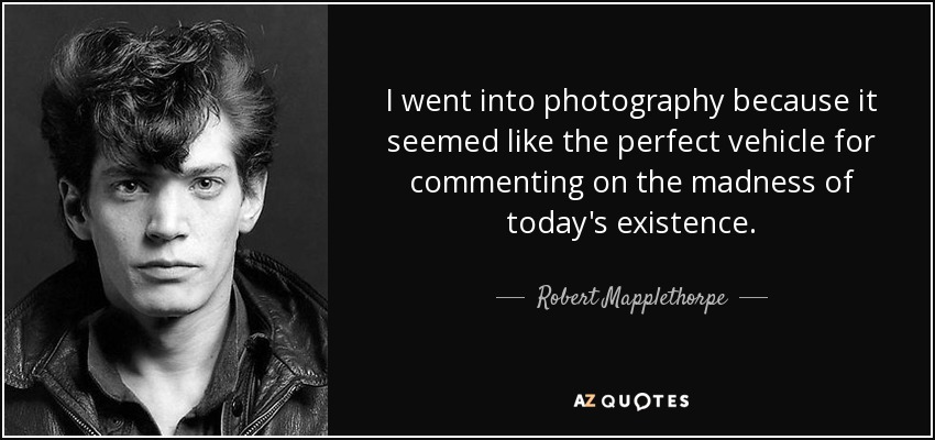 I went into photography because it seemed like the perfect vehicle for commenting on the madness of today's existence. - Robert Mapplethorpe