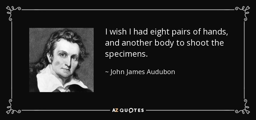 I wish I had eight pairs of hands, and another body to shoot the specimens. - John James Audubon