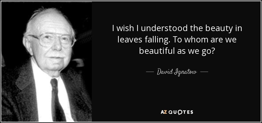 I wish I understood the beauty in leaves falling. To whom are we beautiful as we go? - David Ignatow