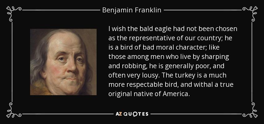 Bald Eagle Quotes