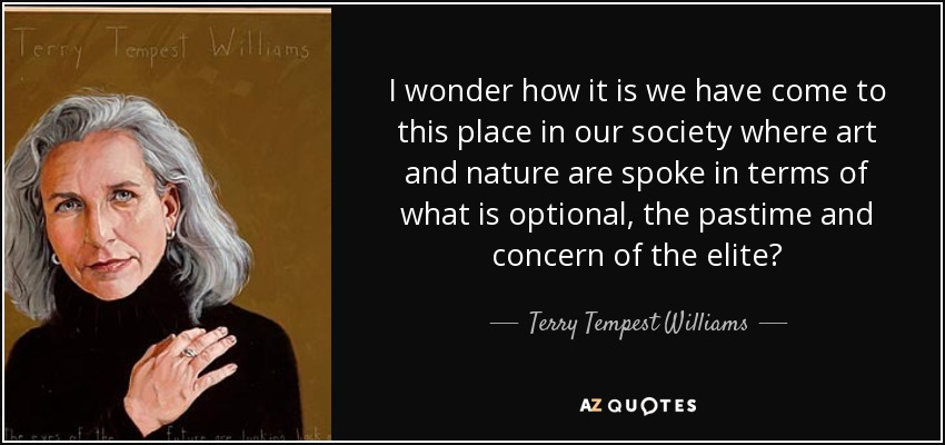 I wonder how it is we have come to this place in our society where art and nature are spoke in terms of what is optional, the pastime and concern of the elite? - Terry Tempest Williams