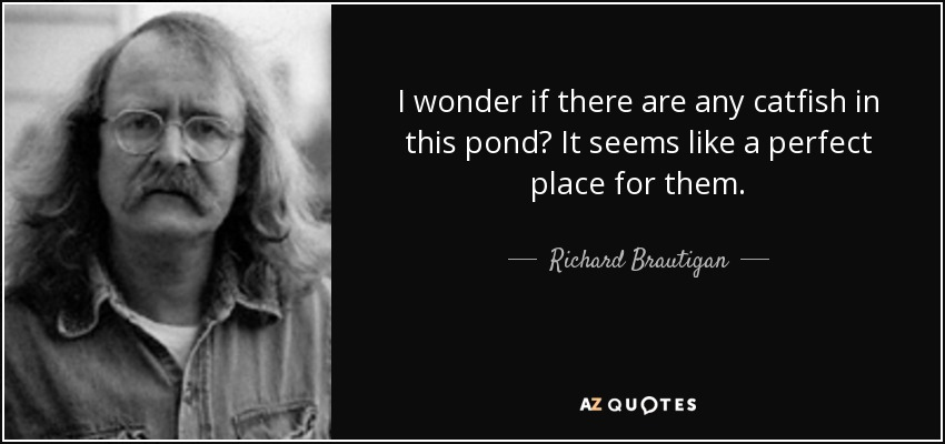 I wonder if there are any catfish in this pond? It seems like a perfect place for them. - Richard Brautigan