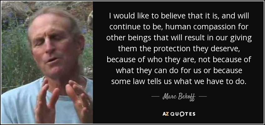 I would like to believe that it is, and will continue to be, human compassion for other beings that will result in our giving them the protection they deserve, because of who they are, not because of what they can do for us or because some law tells us what we have to do. - Marc Bekoff