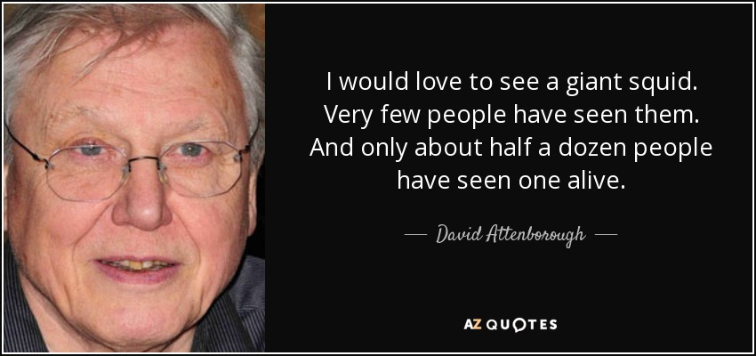 I would love to see a giant squid. Very few people have seen them. And only about half a dozen people have seen one alive. - David Attenborough