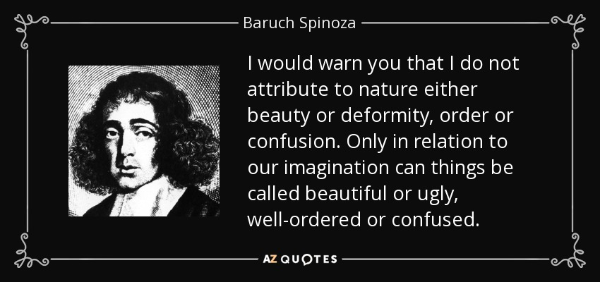 I would warn you that I do not attribute to nature either beauty or deformity, order or confusion. Only in relation to our imagination can things be called beautiful or ugly, well-ordered or confused. - Baruch Spinoza