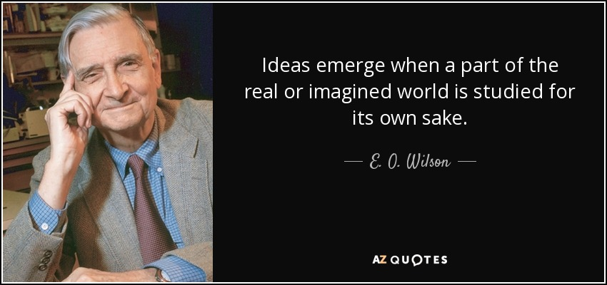 Ideas emerge when a part of the real or imagined world is studied for its own sake. - E. O. Wilson