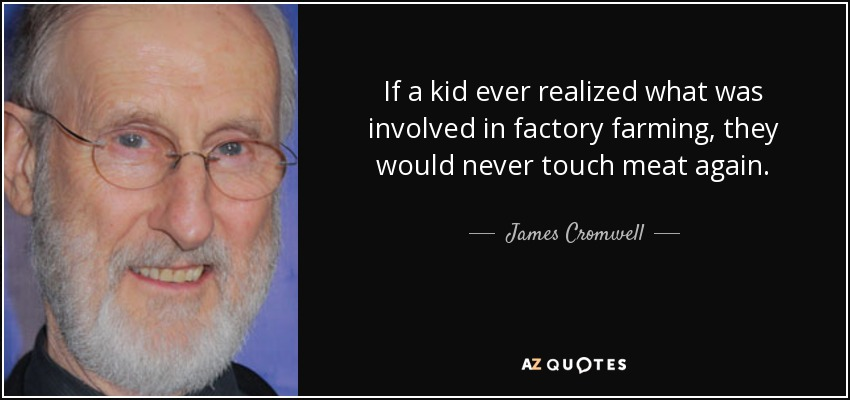 If a kid ever realized what was involved in factory farming, they would never touch meat again. - James Cromwell