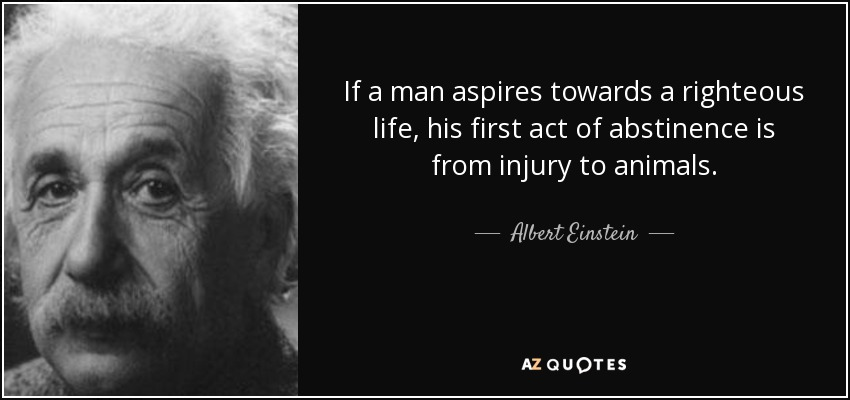If a man aspires towards a righteous life, his first act of abstinence is from injury to animals. - Albert Einstein