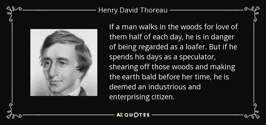 If a man walks in the woods for love of them half of each day, he is in danger of being regarded as a loafer. But if he spends his days as a speculator, shearing off those woods and making the earth bald before her time, he is deemed an industrious and enterprising citizen. - Henry David Thoreau
