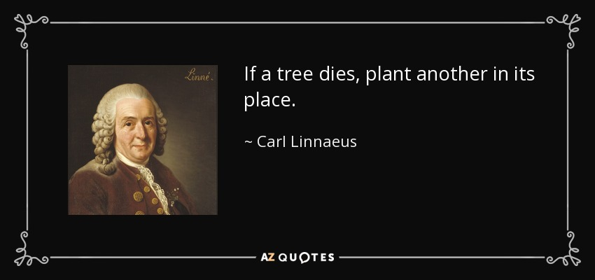 If a tree dies, plant another in its place. - Carl Linnaeus