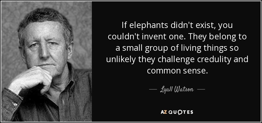 If elephants didn't exist, you couldn't invent one. They belong to a small group of living things so unlikely they challenge credulity and common sense. - Lyall Watson