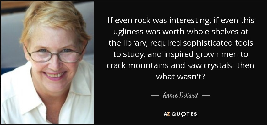If even rock was interesting, if even this ugliness was worth whole shelves at the library, required sophisticated tools to study, and inspired grown men to crack mountains and saw crystals--then what wasn't? - Annie Dillard