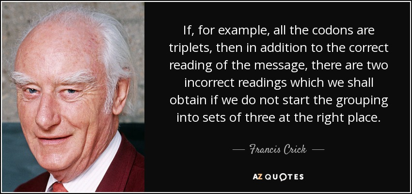 If, for example, all the codons are triplets, then in addition to the correct reading of the message, there are two incorrect readings which we shall obtain if we do not start the grouping into sets of three at the right place. - Francis Crick