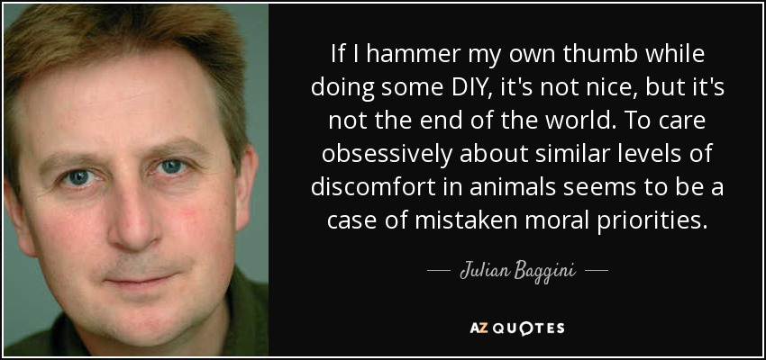 If I hammer my own thumb while doing some DIY, it's not nice, but it's not the end of the world. To care obsessively about similar levels of discomfort in animals seems to be a case of mistaken moral priorities. - Julian Baggini