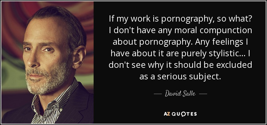 If my work is pornography, so what? I don't have any moral compunction about pornography. Any feelings I have about it are purely stylistic... I don't see why it should be excluded as a serious subject. - David Salle