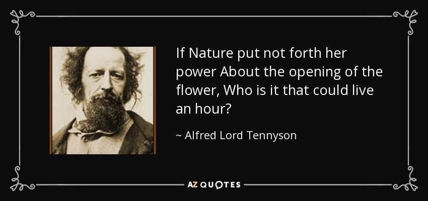 If Nature put not forth her power About the opening of the flower, Who is it that could live an hour? - Alfred Lord Tennyson