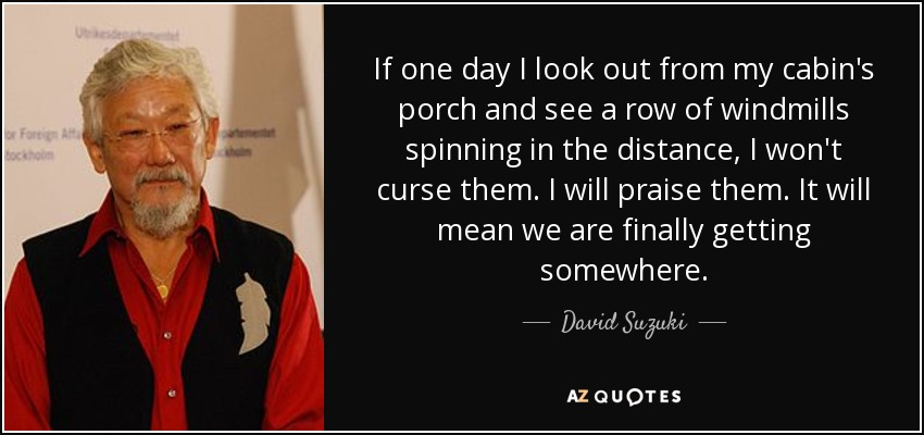 If one day I look out from my cabin's porch and see a row of windmills spinning in the distance, I won't curse them. I will praise them. It will mean we are finally getting somewhere. - David Suzuki