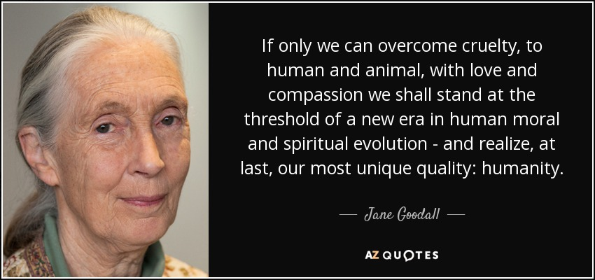 If only we can overcome cruelty, to human and animal, with love and compassion we shall stand at the threshold of a new era in human moral and spiritual evolution - and realize, at last, our most unique quality: humanity. - Jane Goodall