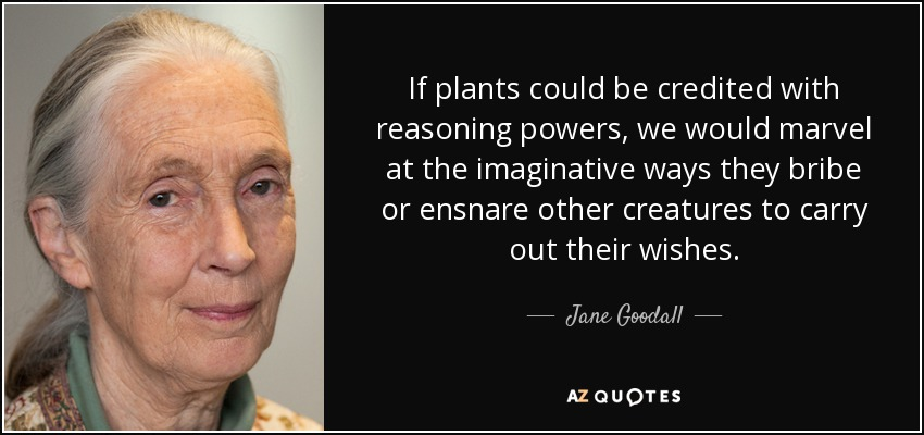 If plants could be credited with reasoning powers, we would marvel at the imaginative ways they bribe or ensnare other creatures to carry out their wishes. - Jane Goodall