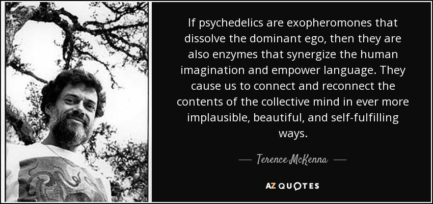 If psychedelics are exopheromones that dissolve the dominant ego, then they are also enzymes that synergize the human imagination and empower language. They cause us to connect and reconnect the contents of the collective mind in ever more implausible, beautiful, and self-fulfilling ways. - Terence McKenna