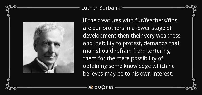 If the creatures with fur/feathers/fins are our brothers in a lower stage of development then their very weakness and inability to protest, demands that man should refrain from torturing them for the mere possibility of obtaining some knowledge which he believes may be to his own interest. - Luther Burbank