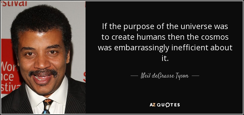 If the purpose of the universe was to create humans then the cosmos was embarrassingly inefficient about it. - Neil deGrasse Tyson