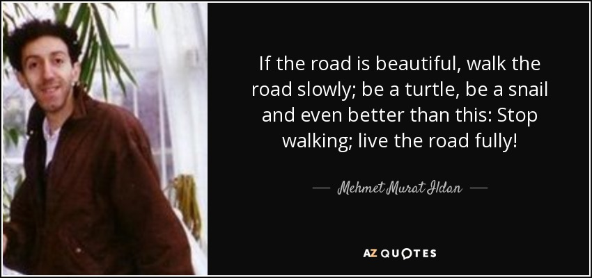 If the road is beautiful, walk the road slowly; be a turtle, be a snail and even better than this: Stop walking; live the road fully! - Mehmet Murat Ildan