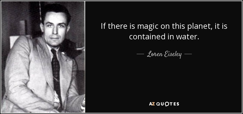 If there is magic on this planet, it is contained in water. - Loren Eiseley