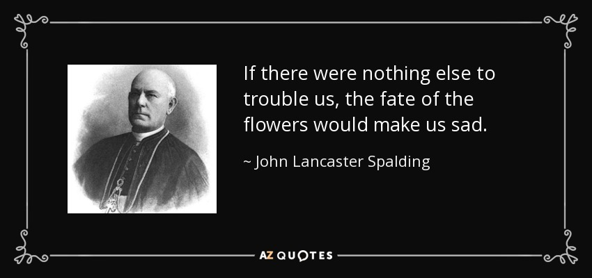 If there were nothing else to trouble us, the fate of the flowers would make us sad. - John Lancaster Spalding