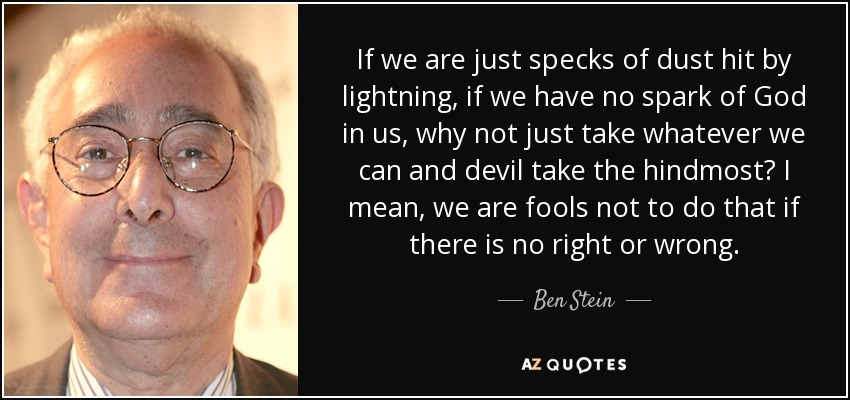 If we are just specks of dust hit by lightning, if we have no spark of God in us, why not just take whatever we can and devil take the hindmost? I mean, we are fools not to do that if there is no right or wrong. - Ben Stein