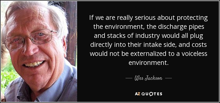 If we are really serious about protecting the environment, the discharge pipes and stacks of industry would all plug directly into their intake side, and costs would not be externalized to a voiceless environment. - Wes Jackson