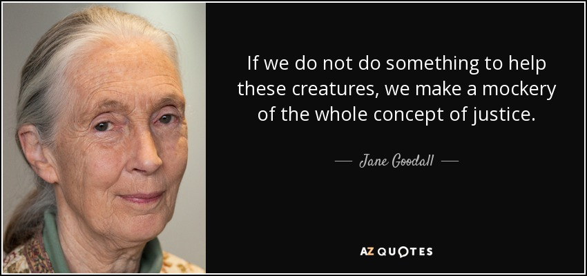If we do not do something to help these creatures, we make a mockery of the whole concept of justice. - Jane Goodall