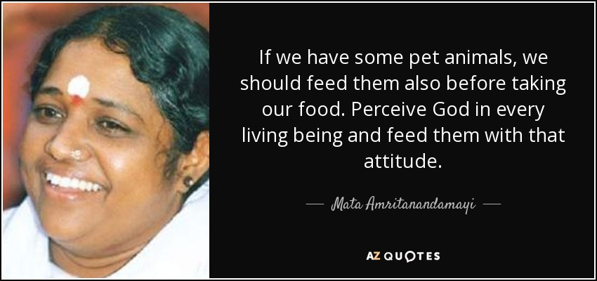If we have some pet animals, we should feed them also before taking our food. Perceive God in every living being and feed them with that attitude. - Mata Amritanandamayi