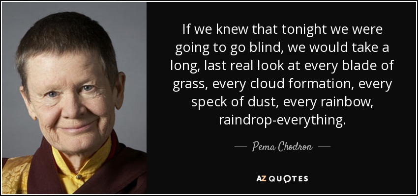 If we knew that tonight we were going to go blind, we would take a long, last real look at every blade of grass, every cloud formation, every speck of dust, every rainbow, raindrop-everything. - Pema Chodron