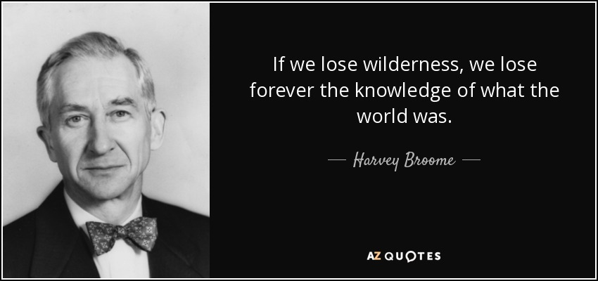 If we lose wilderness, we lose forever the knowledge of what the world was. - Harvey Broome