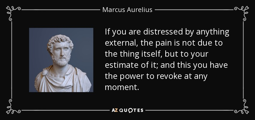 If you are distressed by anything external, the pain is not due to the thing itself, but to your estimate of it; and this you have the power to revoke at any moment. - Marcus Aurelius