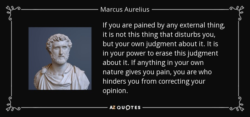 If you are pained by any external thing, it is not this thing that disturbs you, but your own judgment about it. It is in your power to erase this judgment about it. If anything in your own nature gives you pain, you are who hinders you from correcting your opinion. - Marcus Aurelius
