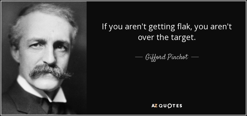 If you aren't getting flak, you aren't over the target. - Gifford Pinchot