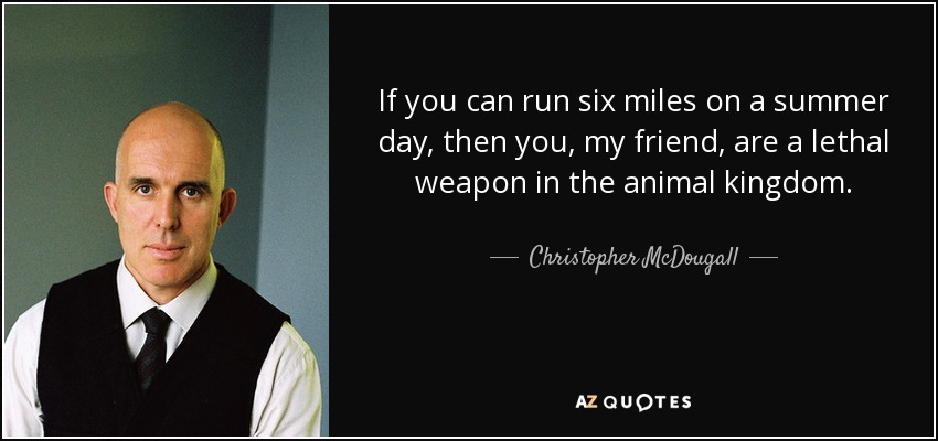 If you can run six miles on a summer day, then you, my friend, are a lethal weapon in the animal kingdom. - Christopher McDougall