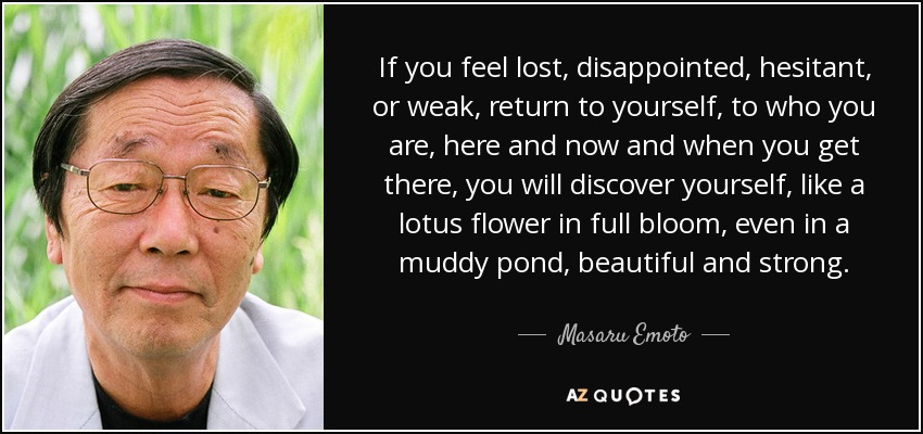 If you feel lost, disappointed, hesitant, or weak, return to yourself, to who you are, here and now and when you get there, you will discover yourself, like a lotus flower in full bloom, even in a muddy pond, beautiful and strong. - Masaru Emoto