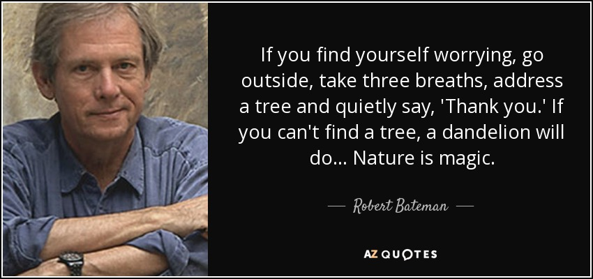 If you find yourself worrying, go outside, take three breaths, address a tree and quietly say, 'Thank you.' If you can't find a tree, a dandelion will do... Nature is magic. - Robert Bateman