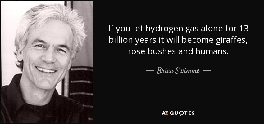 If you let hydrogen gas alone for 13 billion years it will become giraffes, rose bushes and humans. - Brian Swimme