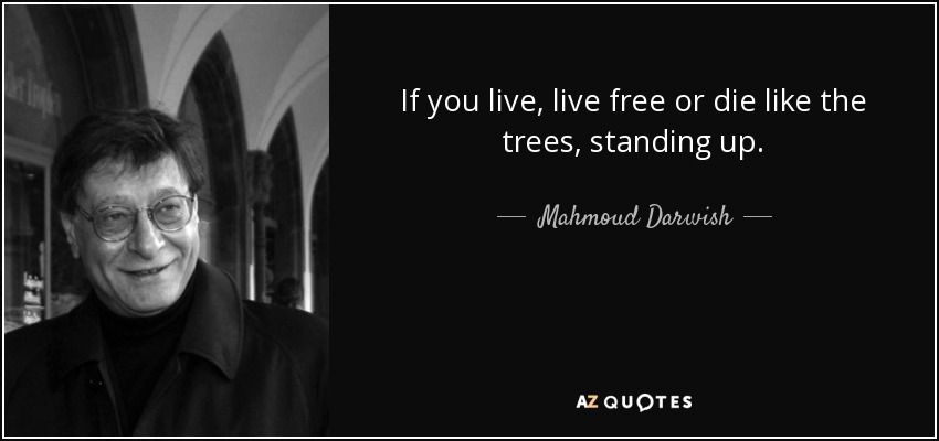 Mahmoud Darwish quote: If you live, live free or die like ...