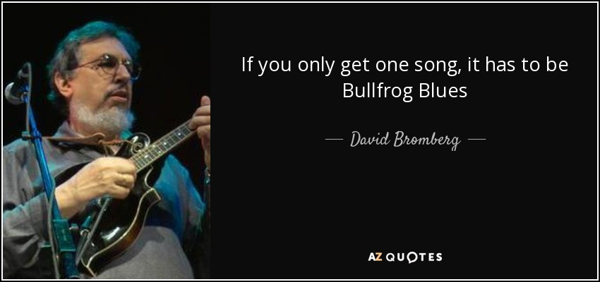 If you only get one song, it has to be Bullfrog Blues - David Bromberg